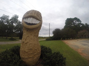 A caricatured peanut sculpture depicting President Jimmy Carter stands tall in his home of Plains, Georgia.